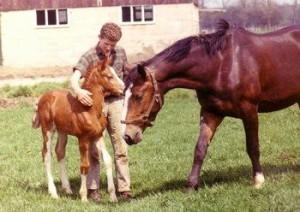 Cees_paarden_vroeger